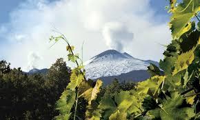Vigneti Tascante alle pendici dell'Etna