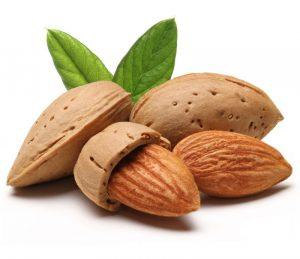 Mandorle, ecco tutte le virtù: energetiche e antiossidanti