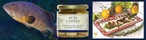Conserve Campisi di Cernia del Mediterraneo