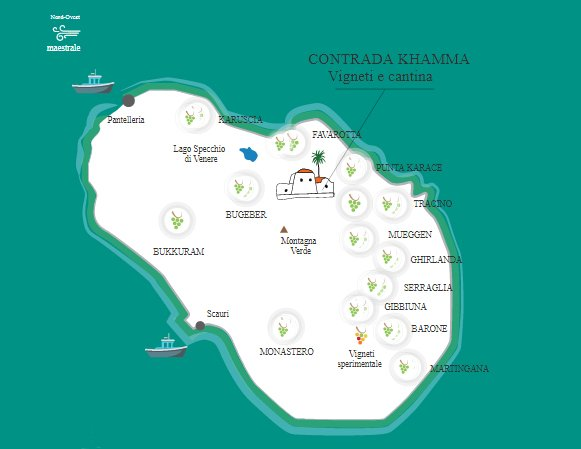 Vigneti e Cantina Donnafugata sull'isola di Pantelleria