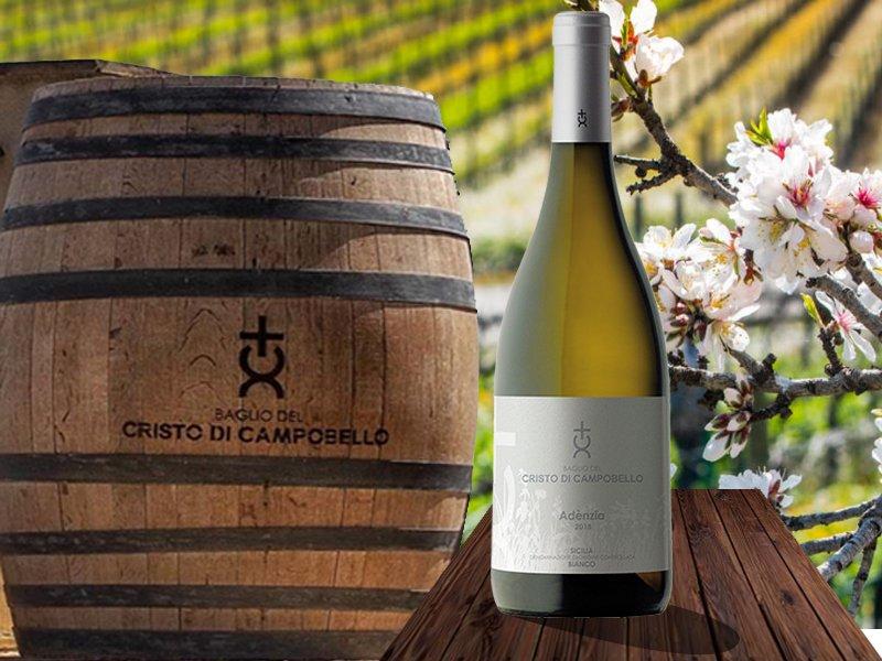 Insolia e Grillo per un Vino Bianco Indimenticabile: Adènzia DOC Cristo di Campobello