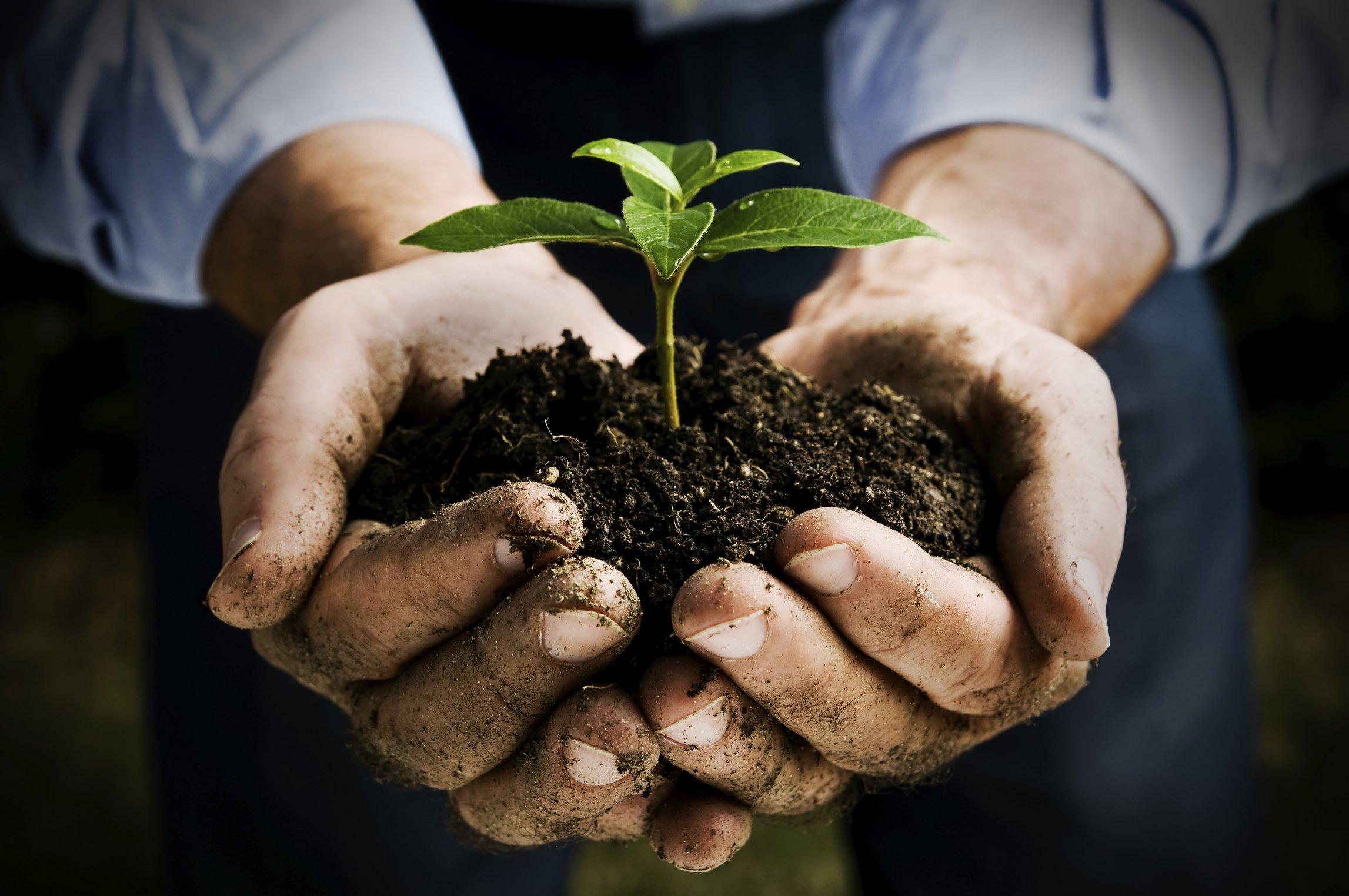 Regime di agricoltura Biologica Certificata
