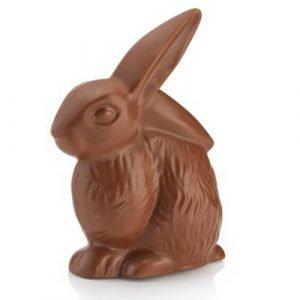 Coniglietto astucciato Cioccolato al Latte Venchi 110g